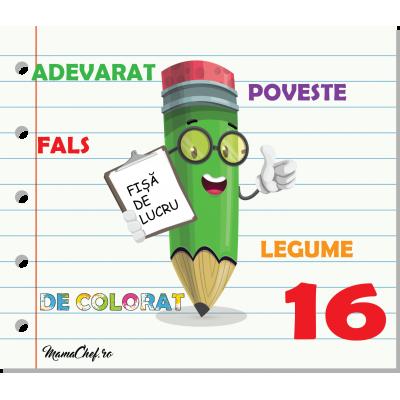 Fișa de activități - 16