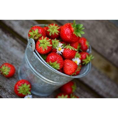 Povestea căpșunilor